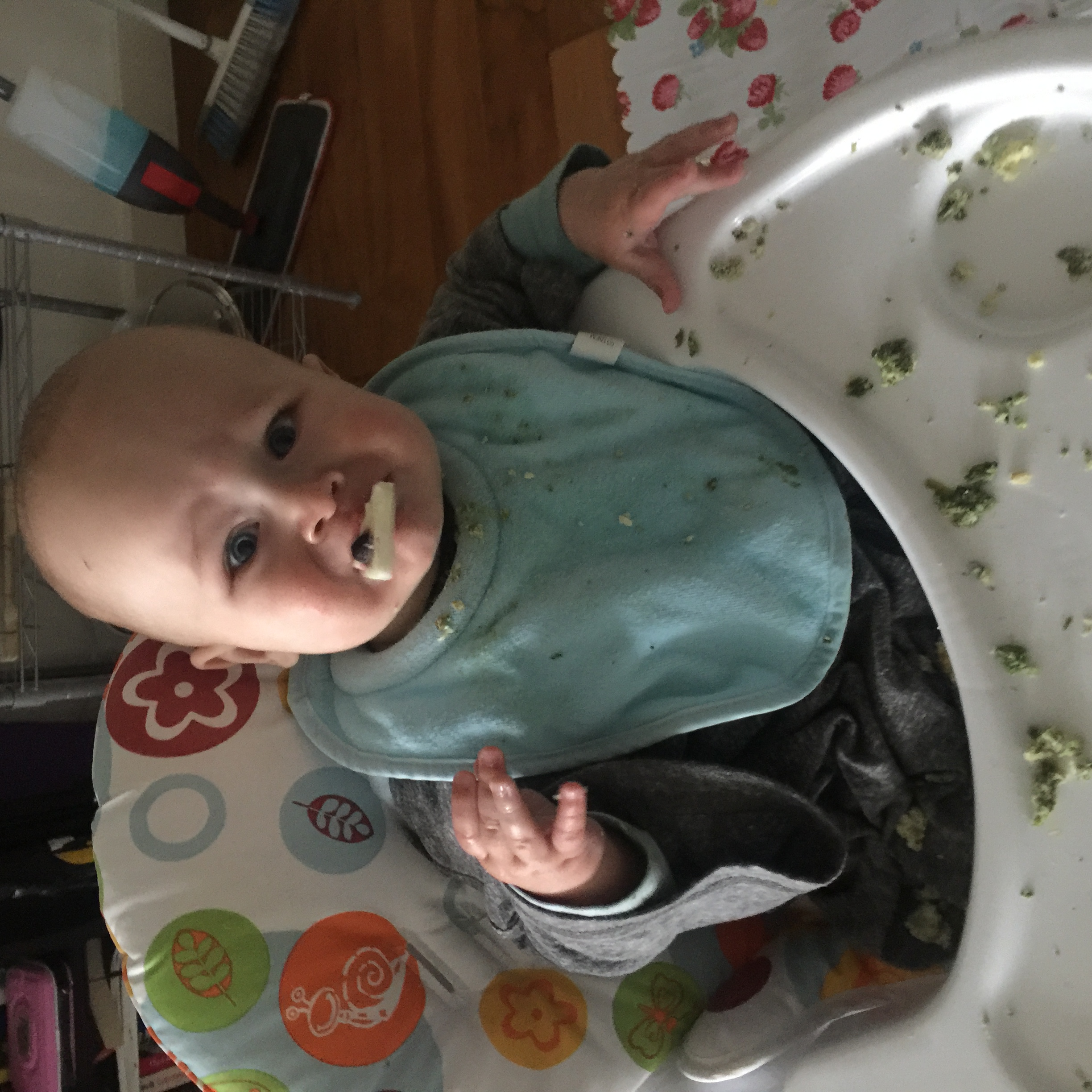 first week baby led weaning