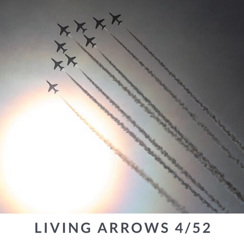 Living Arrows 2017 // 4/52