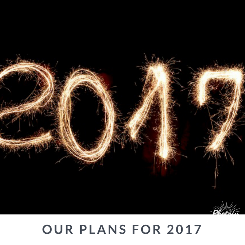 Our Plans for the Year