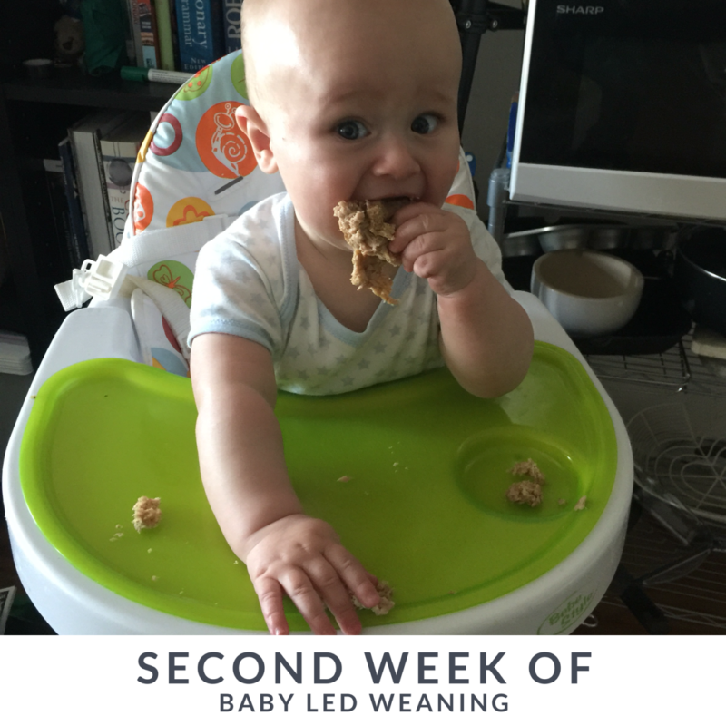 Baby Led Weaning: The Second Week in