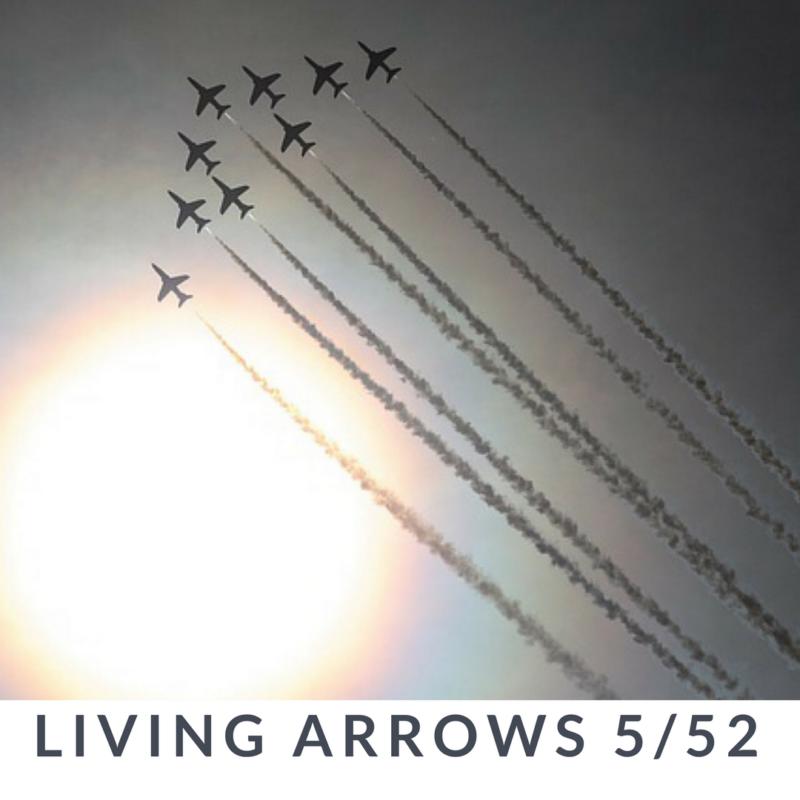 Living Arrows // 5/52