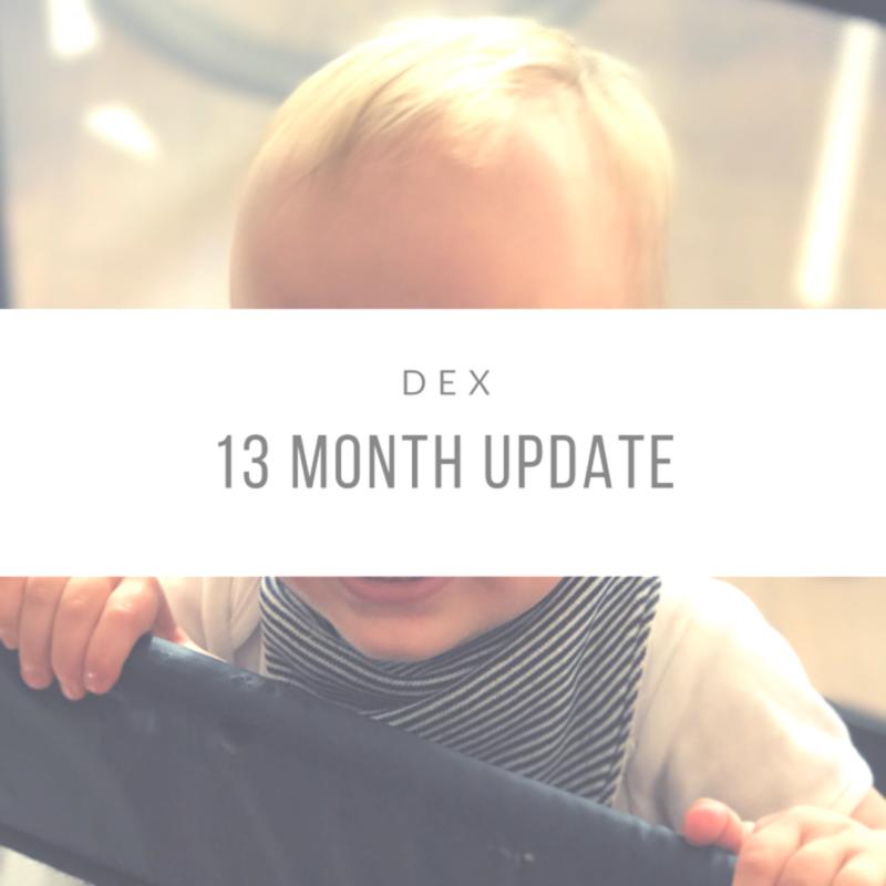 Dexter's 13 Month Update