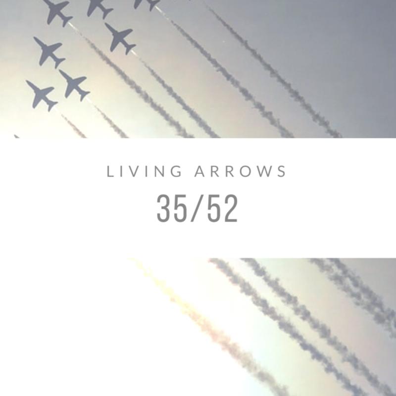Living Arrows 2017 // 35/52