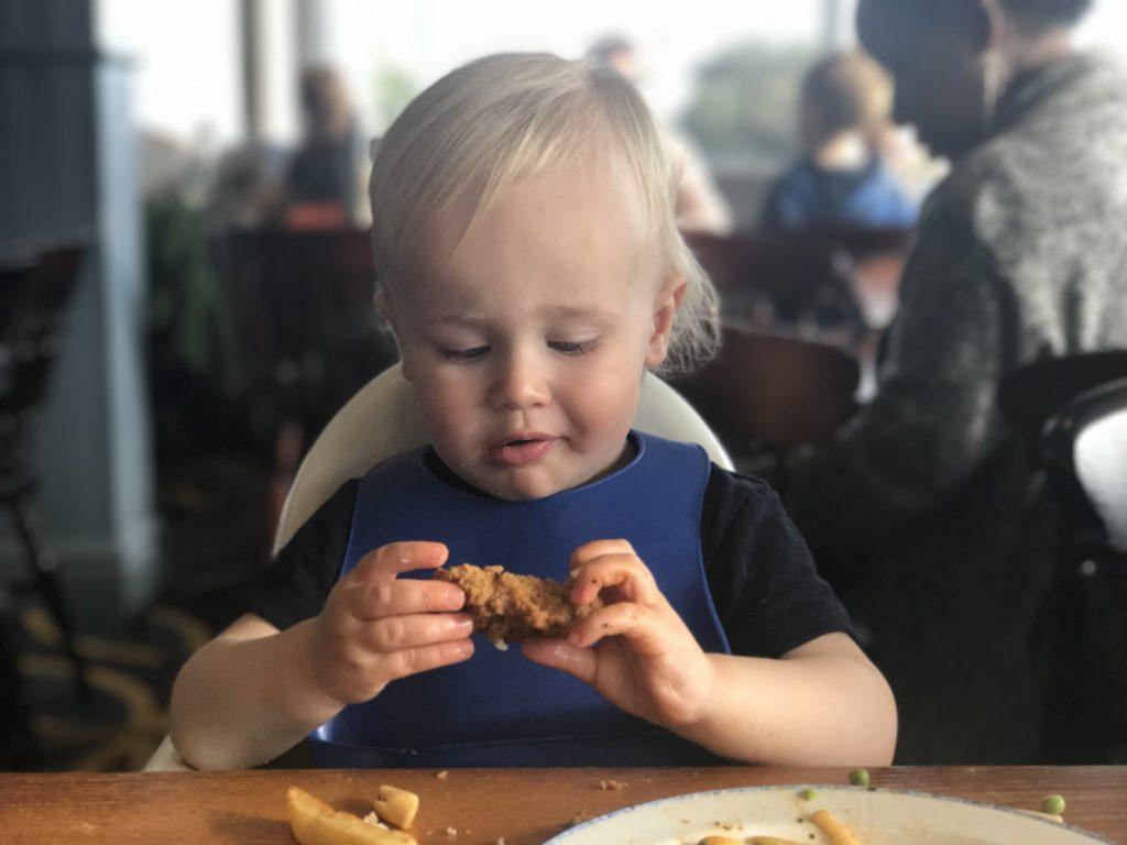 Dexter eating a chicken strip