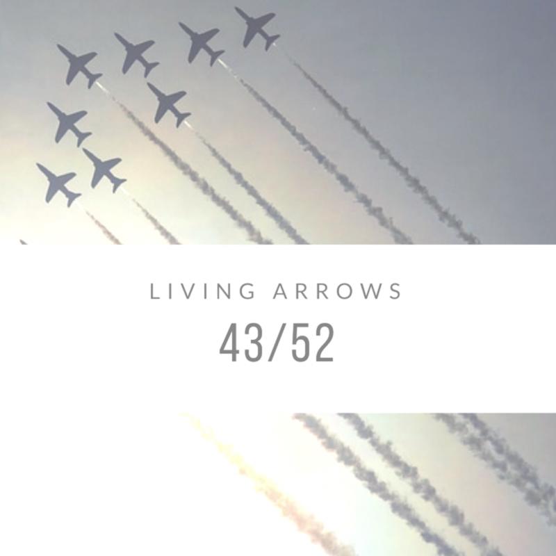 Living Arrows 2017: 43/52