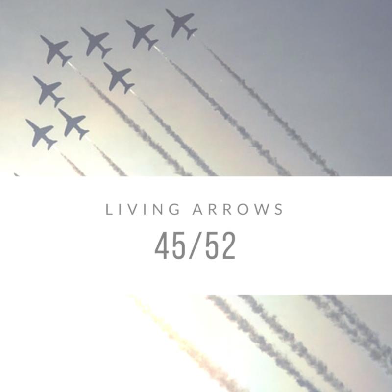 Living Arrows 2017 // 45/52