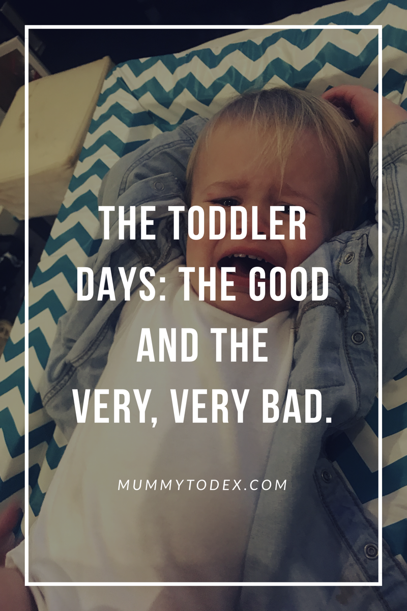 The Toddler Days: The Good And The Very, Very Bad