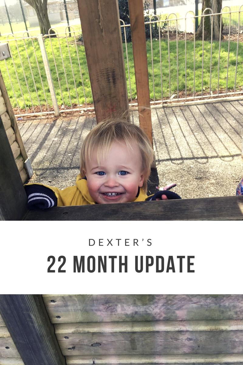 Dexter's 22 Month Update