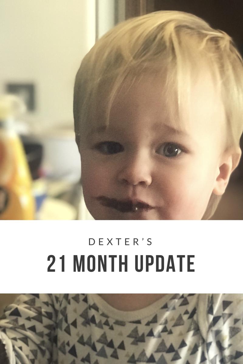 Dexter's 21 Month Update