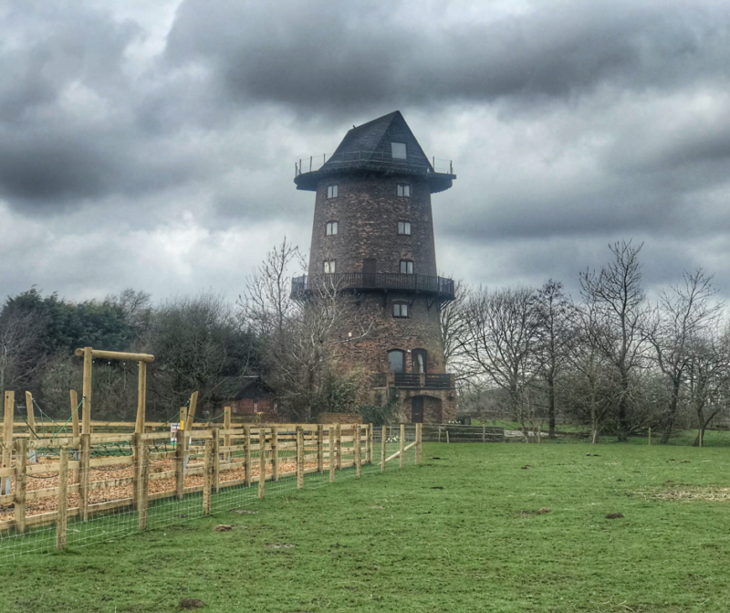 Days Out: Windmill Animal Farm Burscough