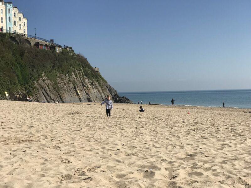 Dexter walking on the sand on Tenby south beach with the sea behind him and cliffs to the left