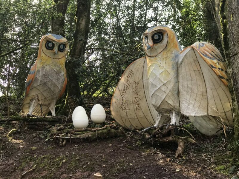 two huge owls next to eggs in the enchanted forest bluestone
