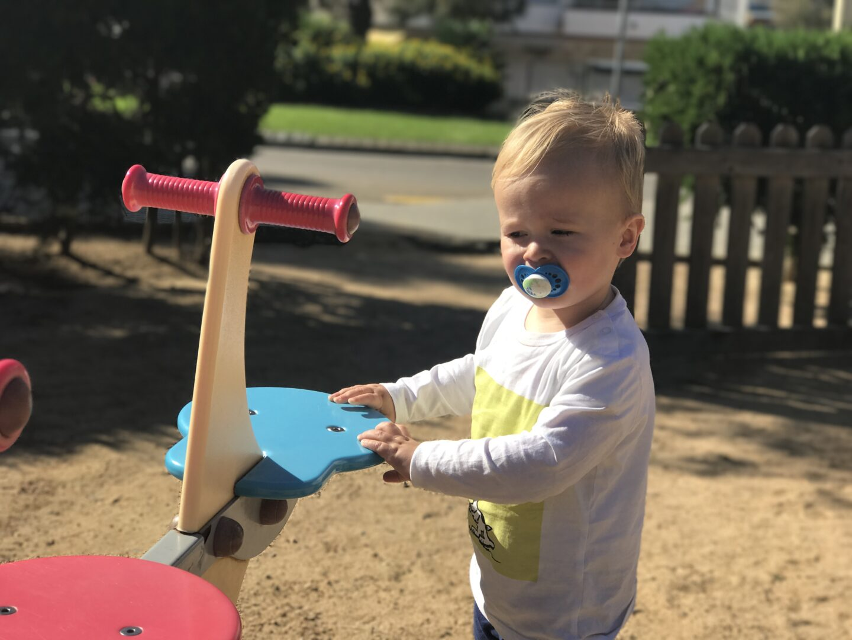 Dexter in a park in lloret de mar using a blue dummy