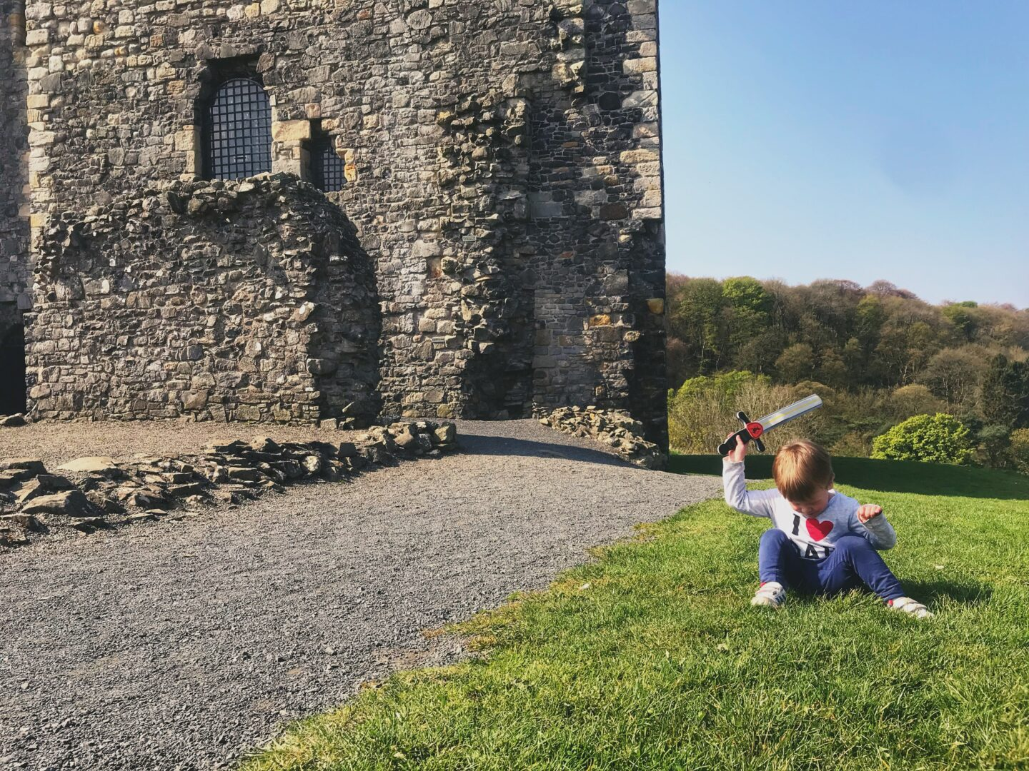Dexter sat on grass outside Dundonald castle holding a plastic sword in the air