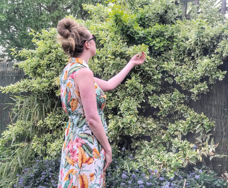 Nicola-garden-warehouse-dress