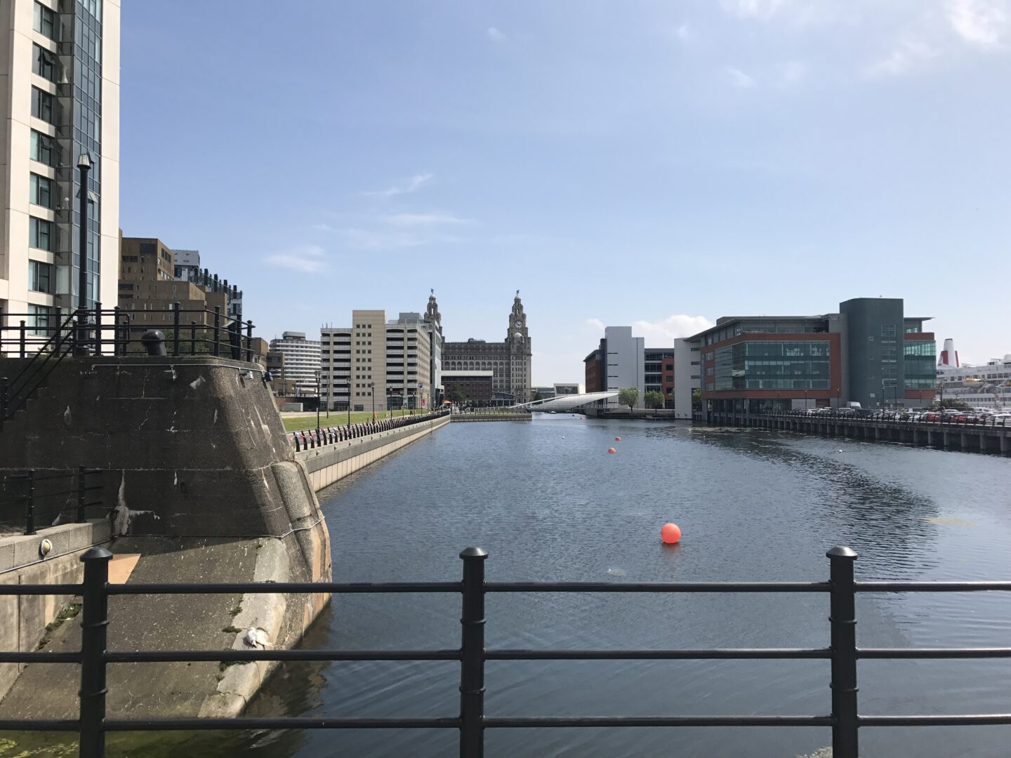 view of the liver building from prince's dock in liverpool