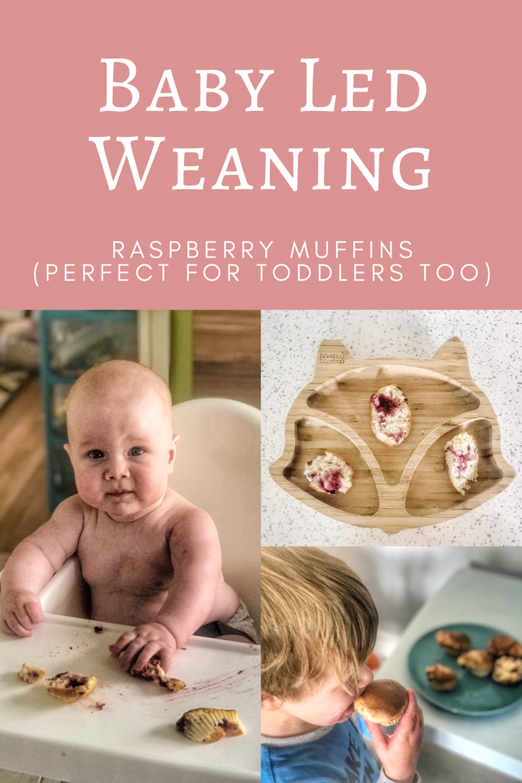 A quick and simple baby led weaning recipe for baby led weaning raspberry muffins perfect for the whole family as a quick snack or breakfast idea #blw #babyledweaning #weaningideas