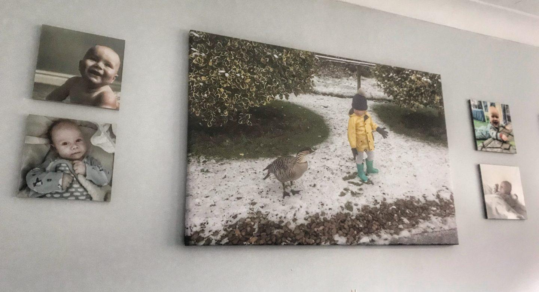 MixPix tiles featuring Felix next to a canvas of Dexter