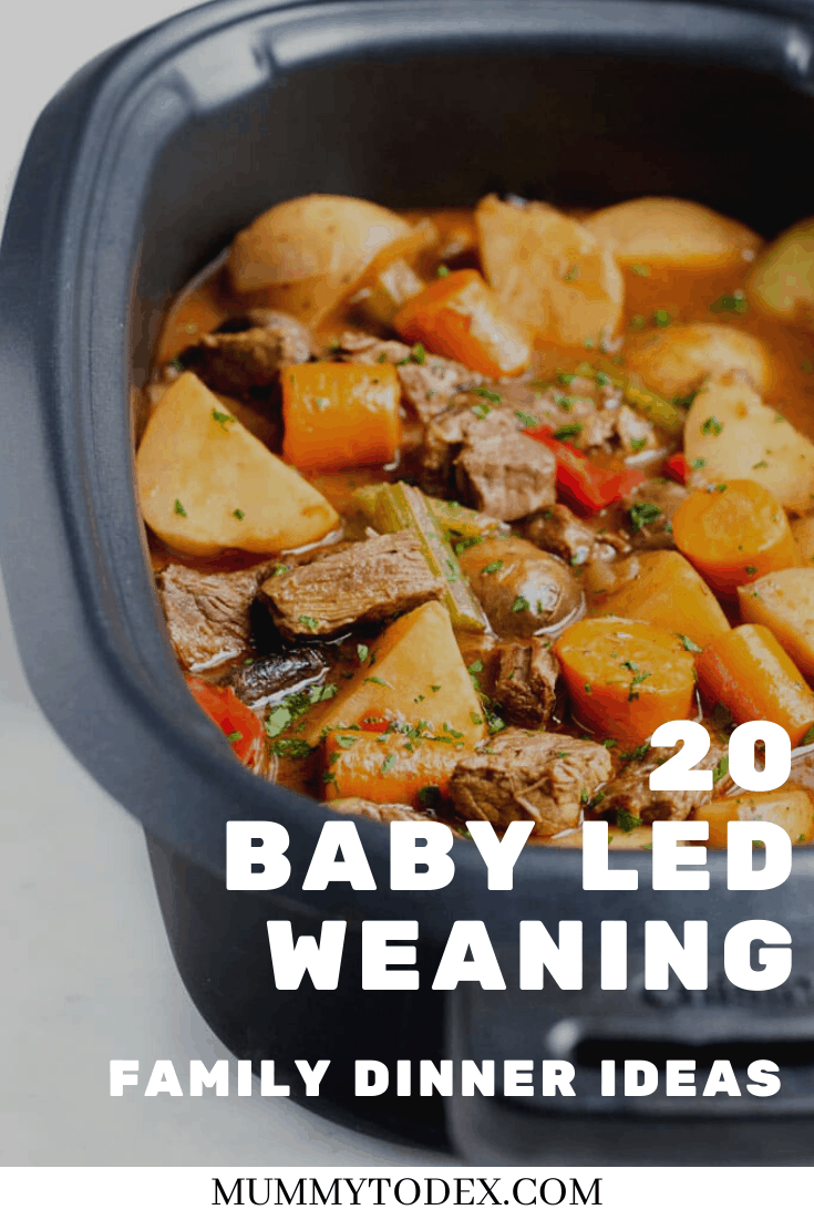 20 Baby Led Weaning Dinner Ideas
