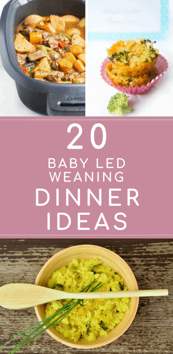 Thinking of new things to cook your baby for dinner can be tough, especially meals you can all join together as a family. This post brings together my 20 favourite baby led weaning dinner ideas, whether you're new to blw or a baby led weaning pro, there's something here for everybody, including CMPA, vegan and vegetarian diet. #babyledweaning #weaning #blw