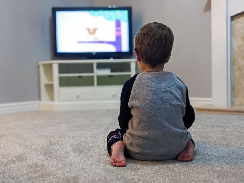 Dexter sat on the grey carpet watching TV