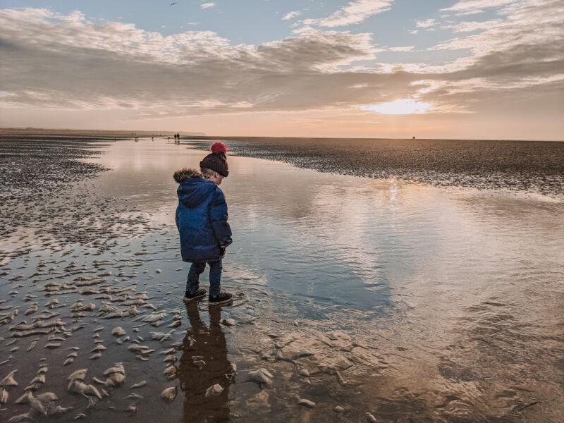 Dexter on Ainsdale beach as the sun is setting