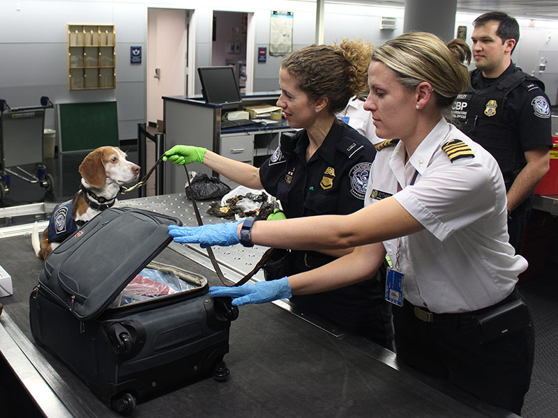 two female airport security workers checking luggage