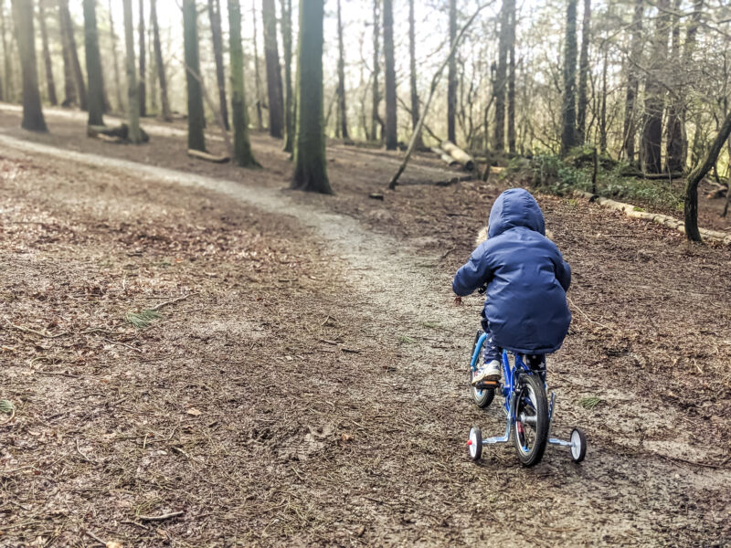 Dexter riding his bike along a path through the woods in Beacon Country Park