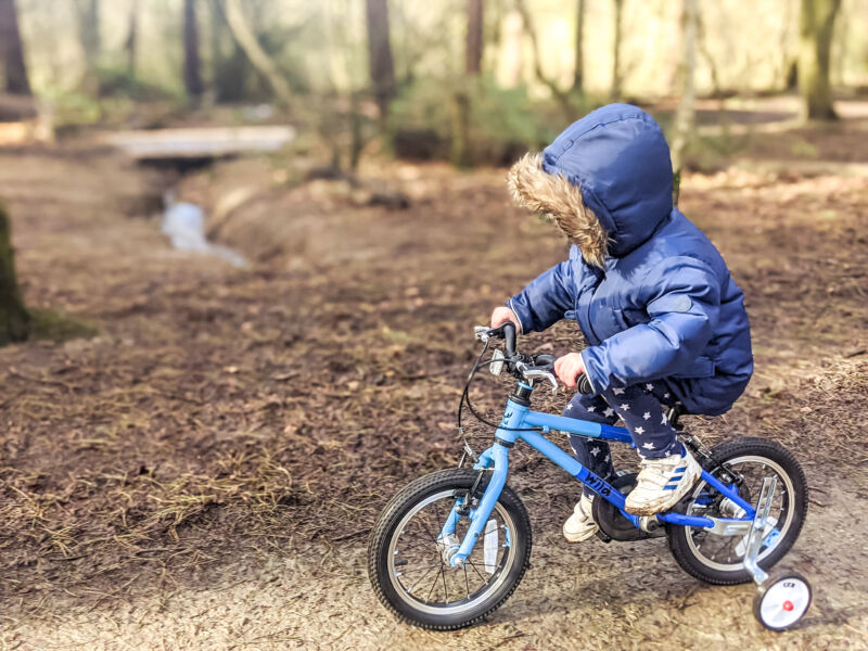 Dexter riding his blue bike through the woods at Beacon Country Park