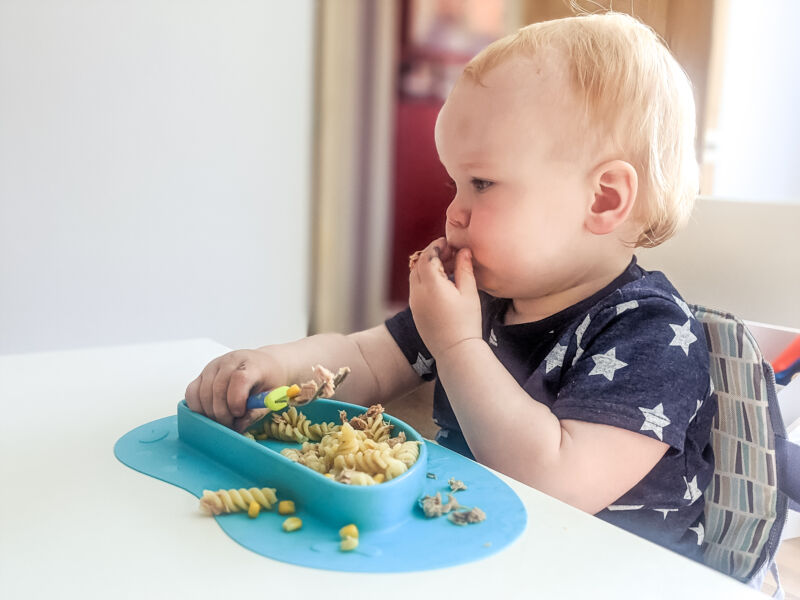 Felix eating tuna pasta salad using a fork and his hands
