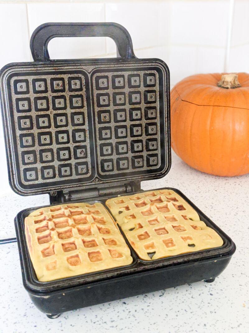 Pumpkin waffles in the waffle maker