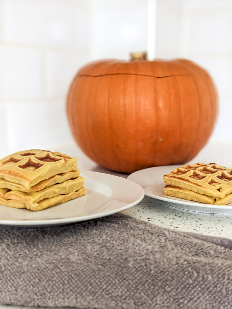 Pumpkin waffles on the plate for baby and toddler