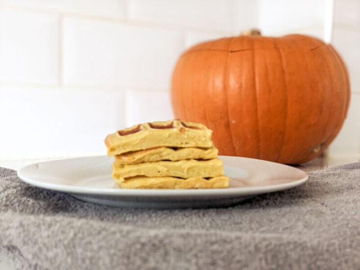 pumpkin waffles on a plate landscape