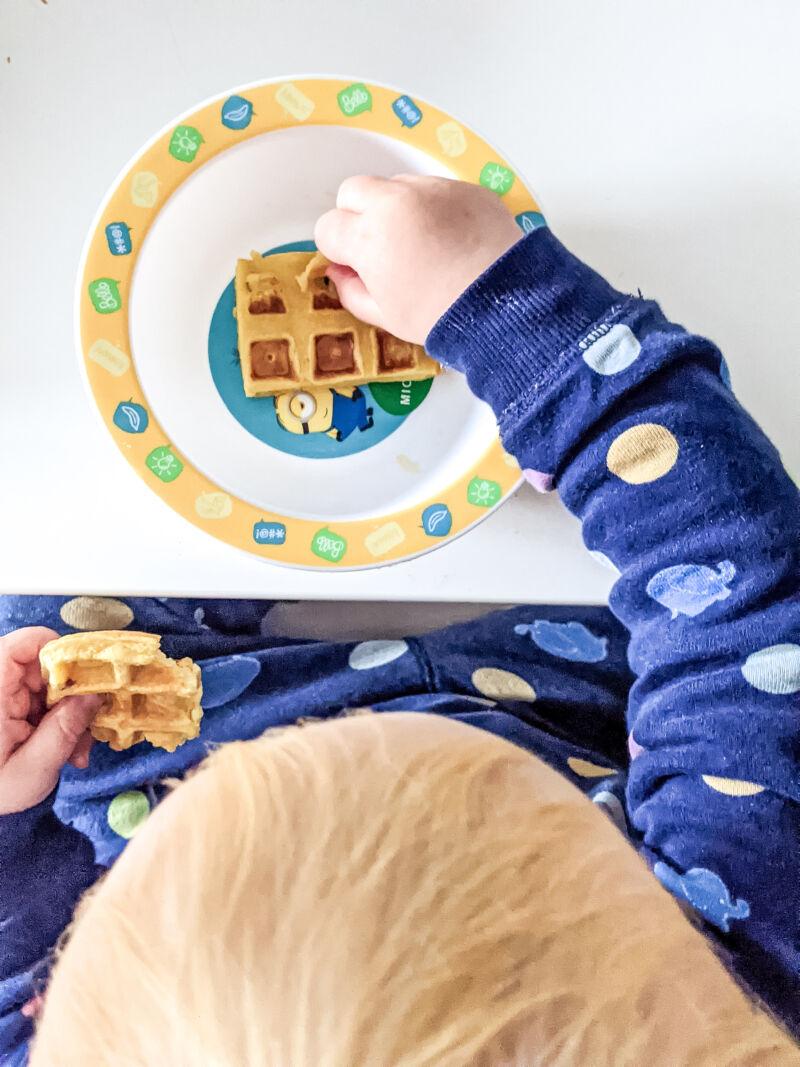 Felix eating pumpkin waffles