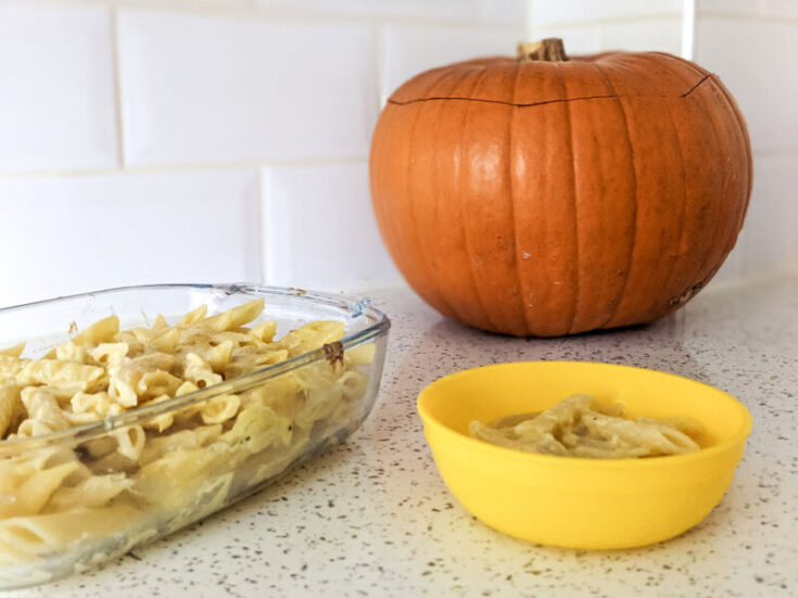 Cheesy pumpkin pasta in the baking dish and bowl next to a huge pumpkin