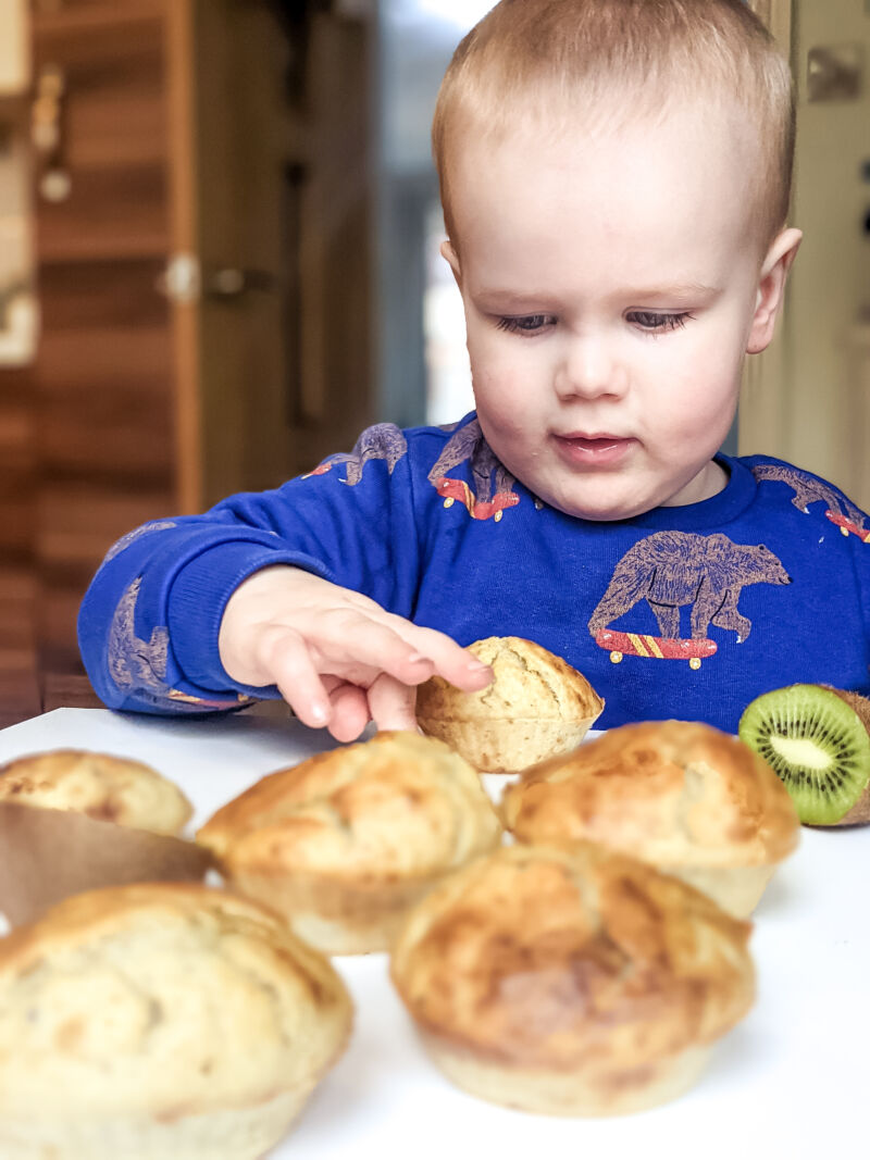 Felix reaching for the kiwi muffins for babies