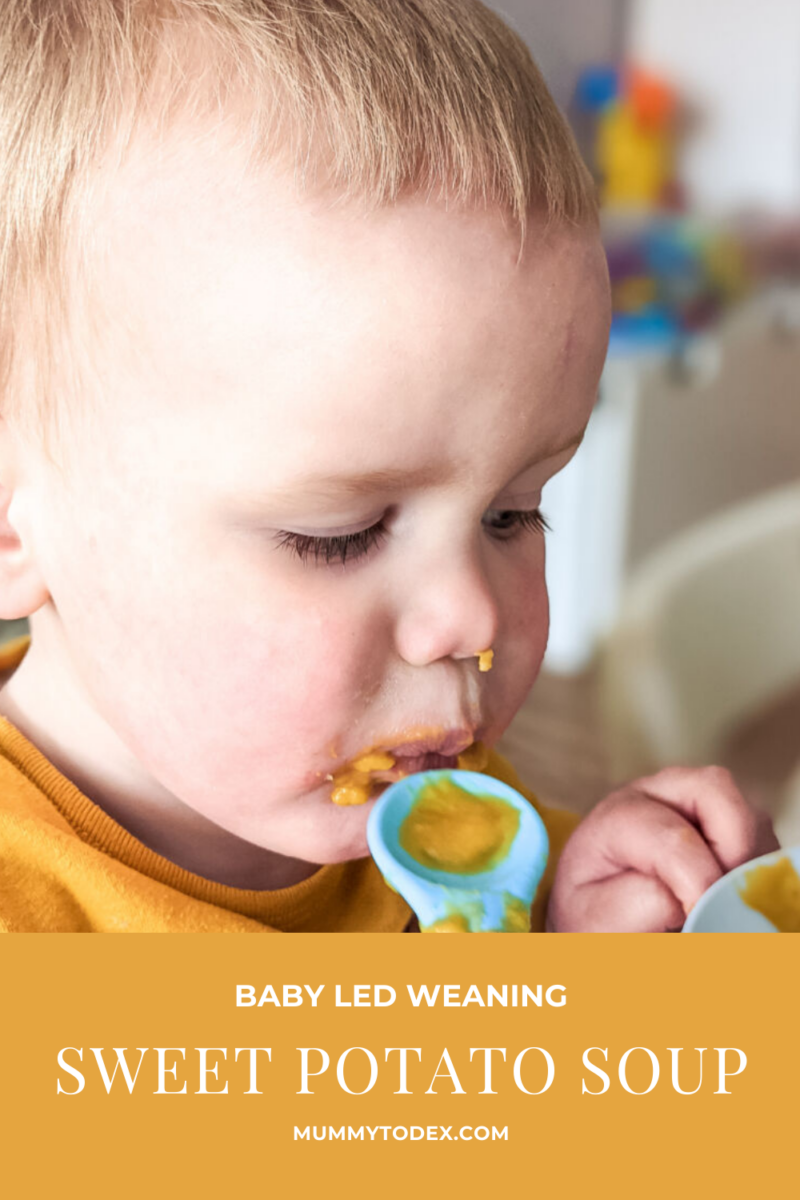 Discover sweet potato soup for babies. This recipe is quick, healthy and delicious to boot. Create stomach warming sweet potato soup for you and baby to enjoy. Follow Mummy to Dex for more baby led weaning recipes.